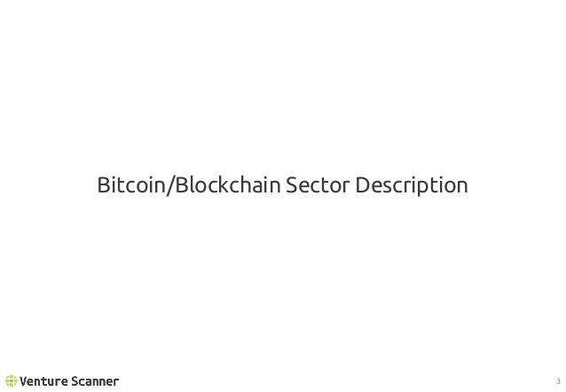 Bitcoin/Blockchain Sector Description
