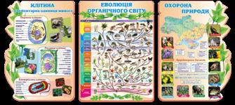 Екологічний квест Пригоди у болоті присвячений Дню Водноболотних угідь та розрахований для учнів 56 класів