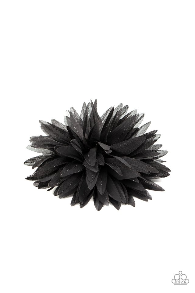 Bloom Baby, Bloom - Black - Paparazzi Hair Accessories Image