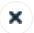 X Button.JPG