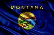 Montana falg small.jpg