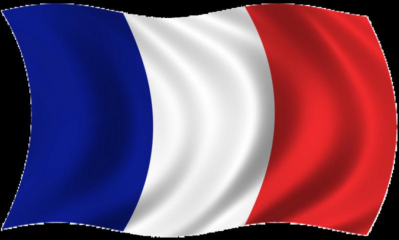 Fichier:Drapeau FR.png
