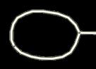 278px-Jct loop bulb.png