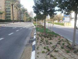 Primary Street.jpg