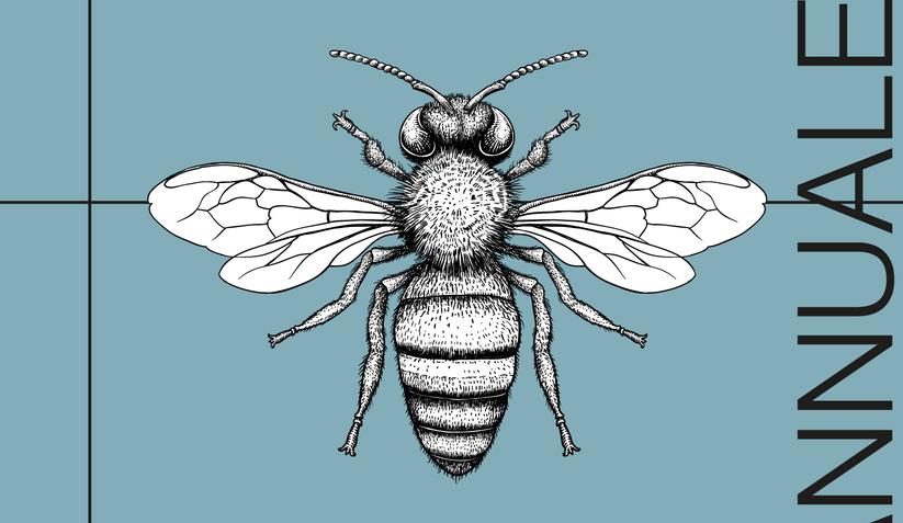 05 19 2021 insetti corsi autunno 1500x1200 carosello sads annuale.jpg?googleaccessid=application bucket access@typee 222610.iam.gserviceaccount