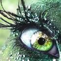Large occhio verde.jpg?googleaccessid=application bucket access@typee 222610.iam.gserviceaccount