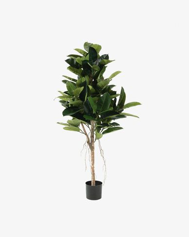 Pianta ficus artificiale