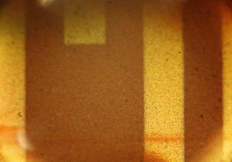 Free Brown Microscopic 35mm Film Texture - L+T