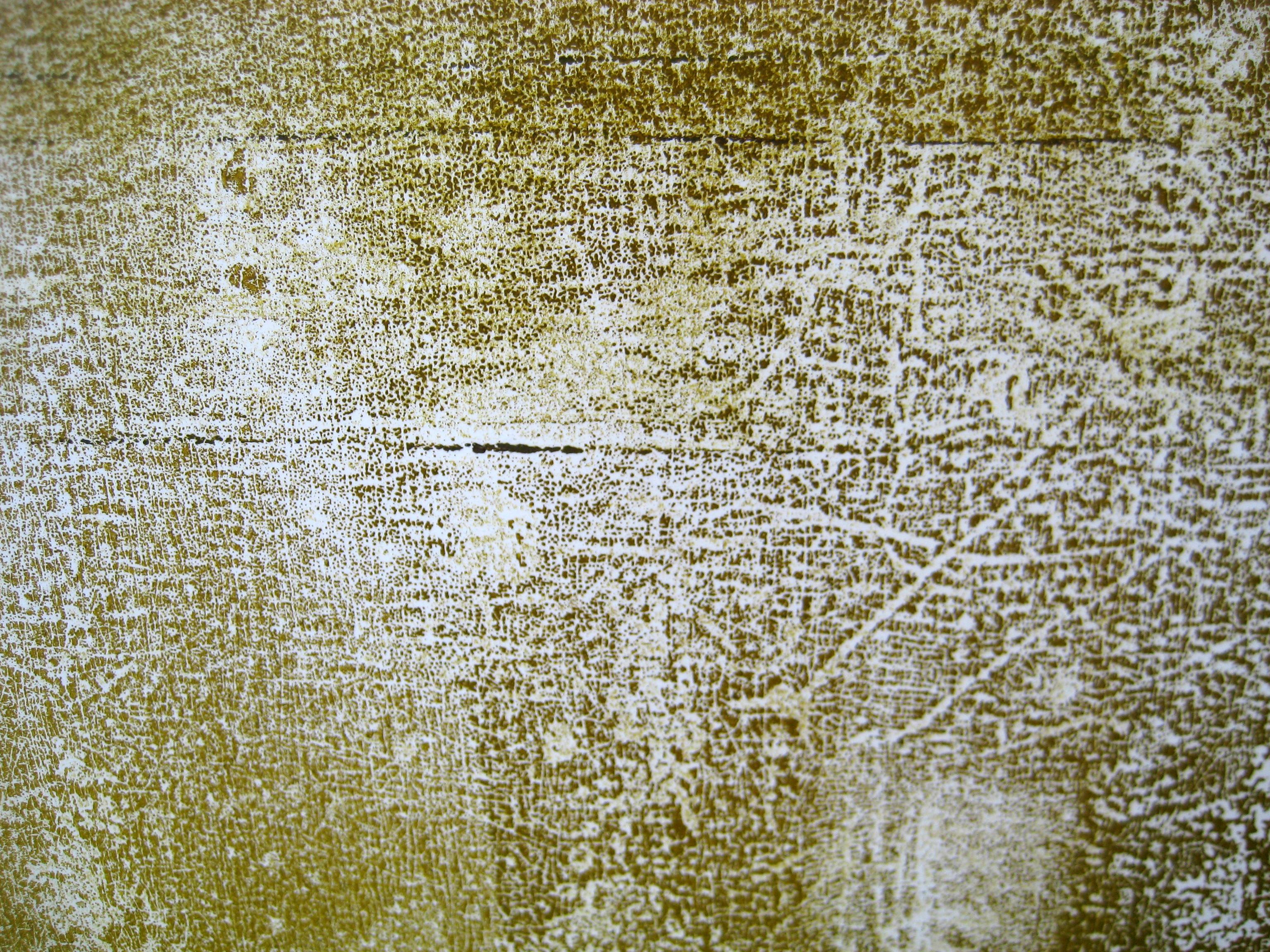 Comprehensive image inside printable textures