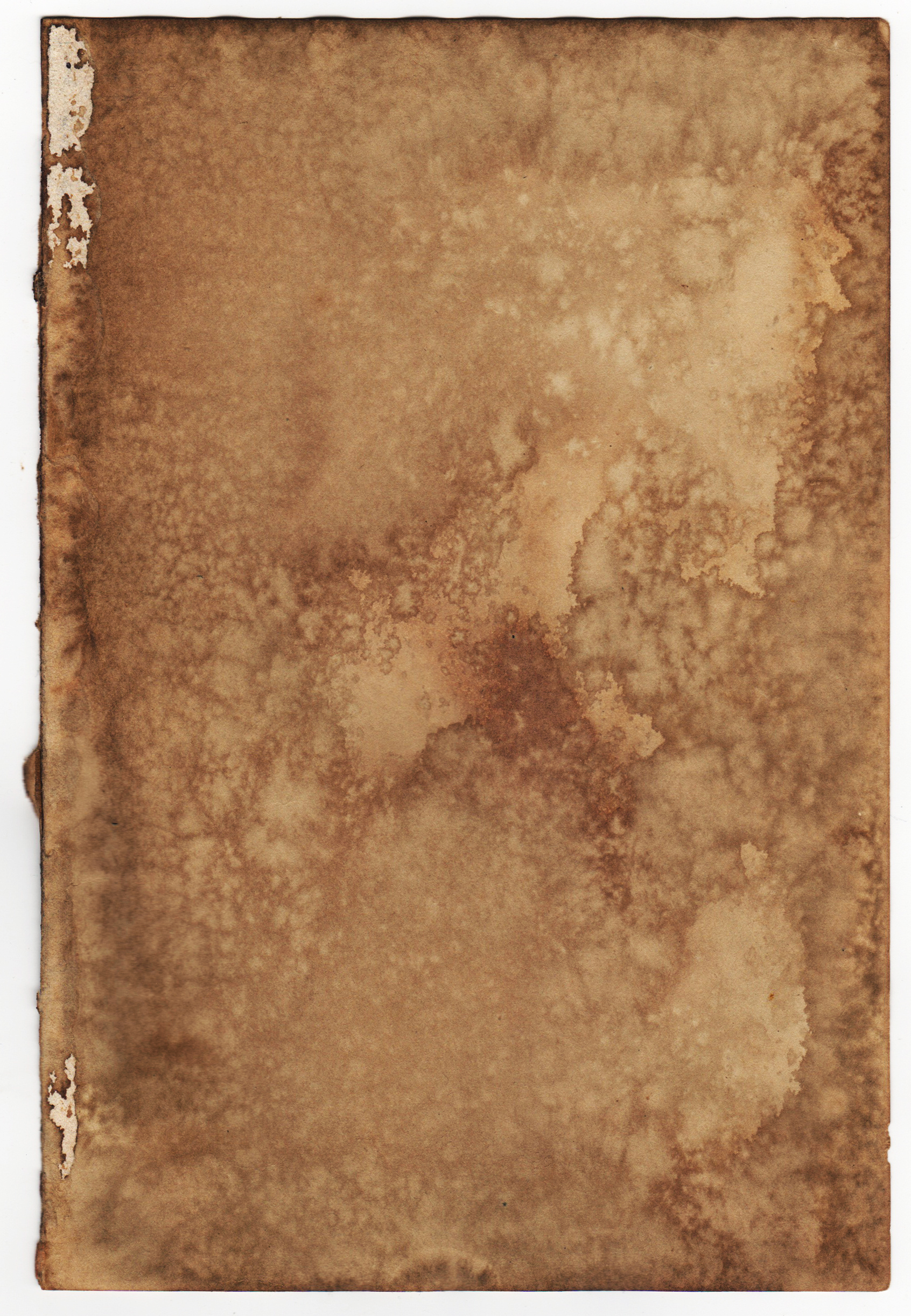free tan tea stained paper texture texture