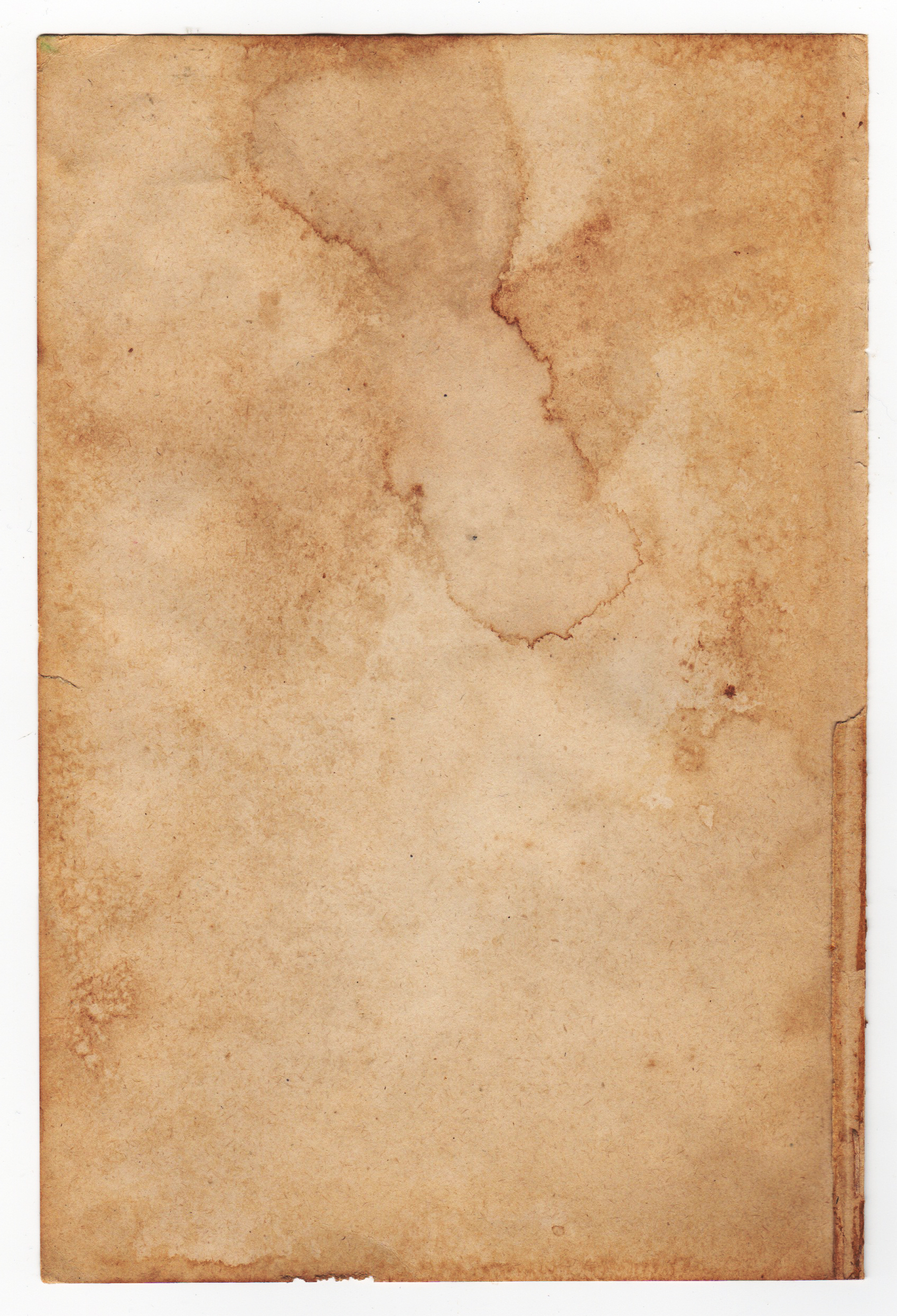 Free Tan Tea Stained Paper Texture Texture - L+T