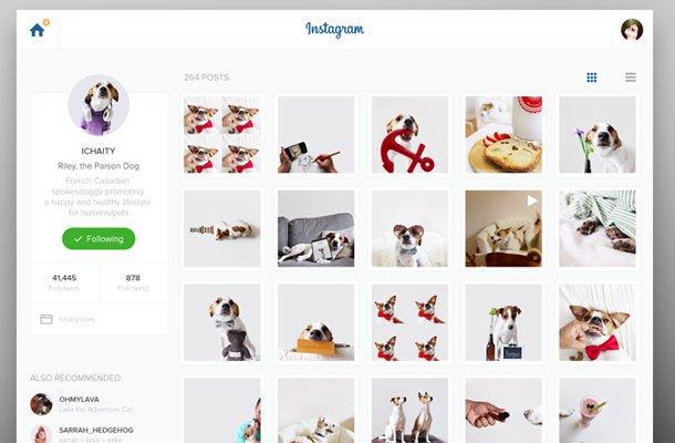 instagram website flat layout redesign