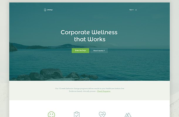 life dojo landing page website layout