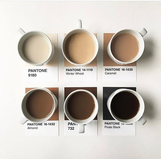 The Basics of Coffee Branding & Design – Coffee Design Ideas Brewed to Perfection