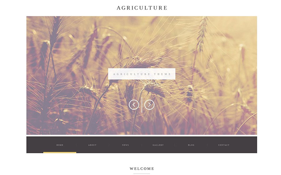 ure Business WordPress Theme