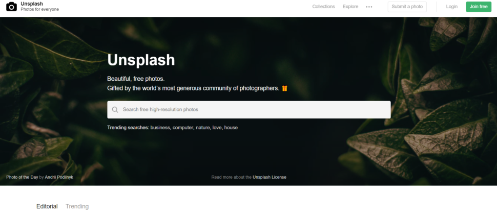 Amazing Websites That Provide You With High-Quality Free Photos