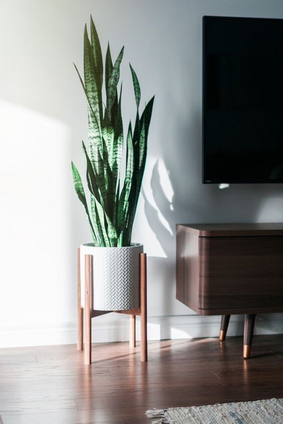 5 Of The Best Minimalist Decoration Items For Your Home Web Design