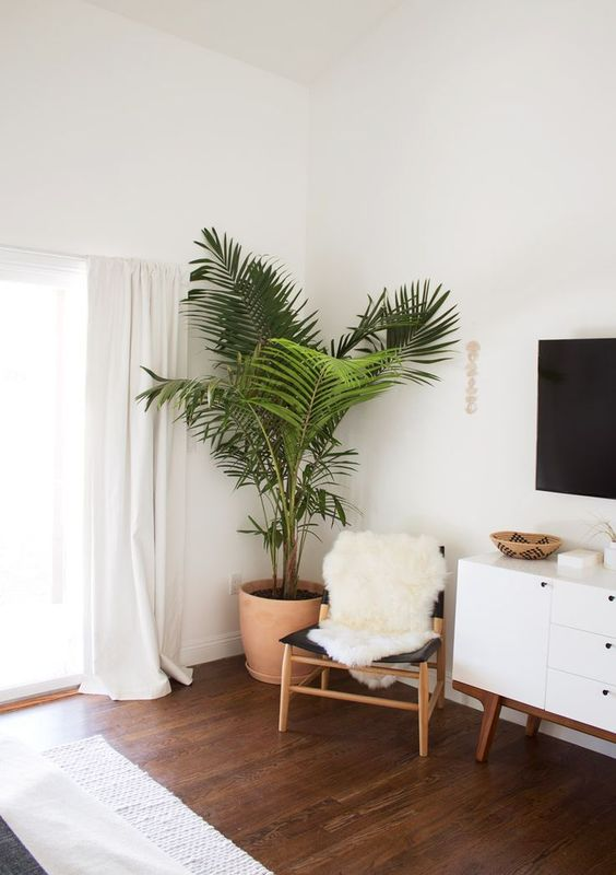 5 Of The Best Minimalist Decoration Items For Your Home