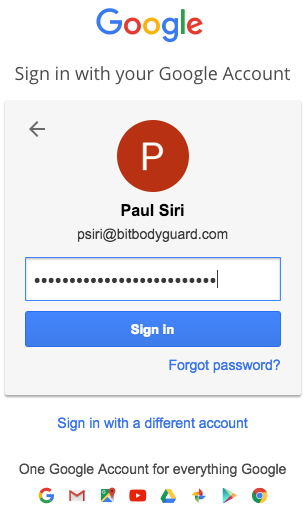 Google 2SV password