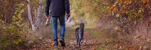 hond uitlaten in de herfst
