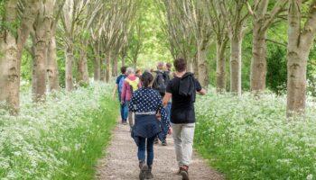 Excursiegroep-op-wandelpad-met-fluitekruid