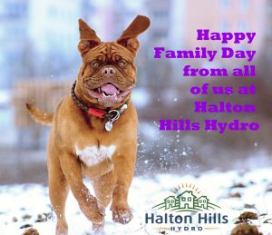 Dog running, Happy Family day from all of us at Halton Hills Hydro