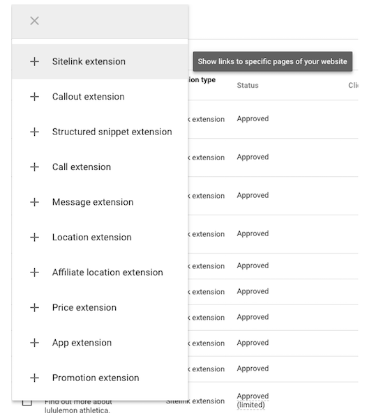 Google Ads extensions options