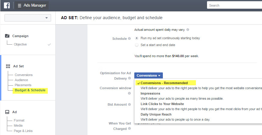 Facebook Conversion ads delivery set