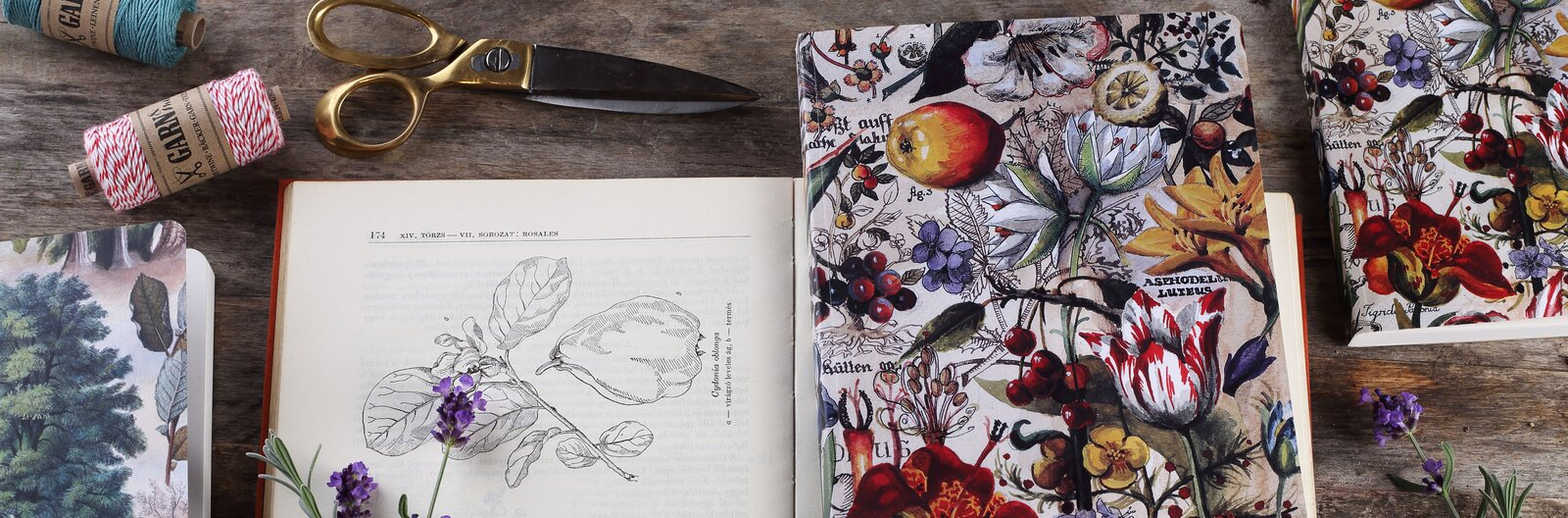 Grafománok, figyelem! – 7 csodás noteszt ajánlunk az őszre