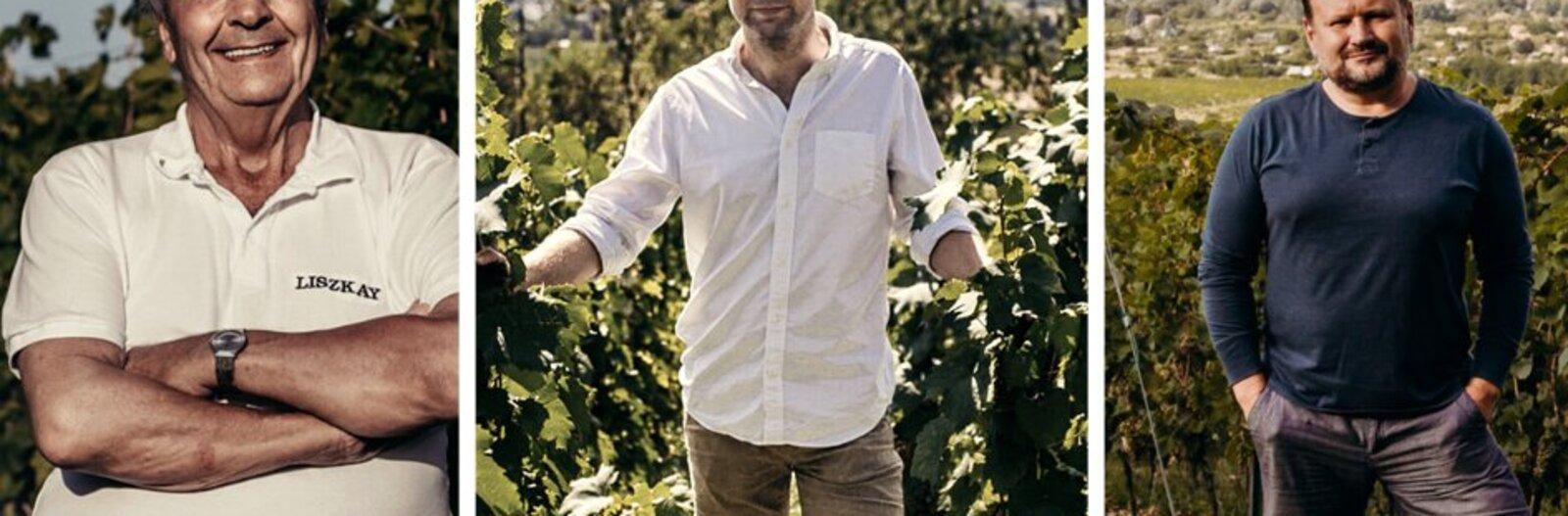 A változatosság vidéke – 5 borász 5 kedvenc dűlője az északi parton