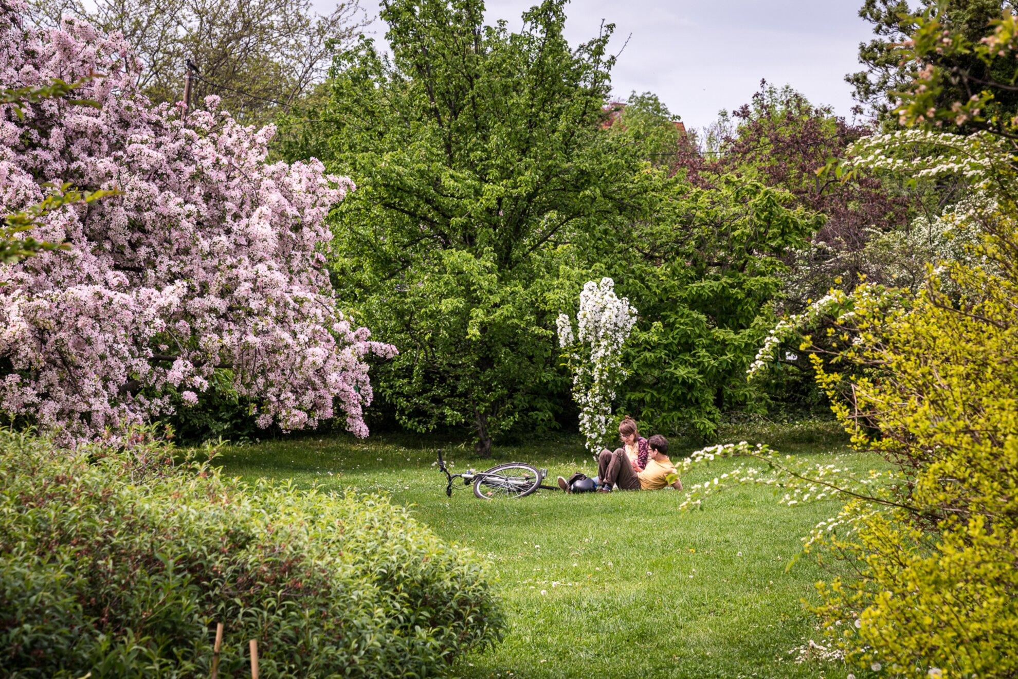 Tavaszkert Dísznövény Szakkiállítás és Vásár