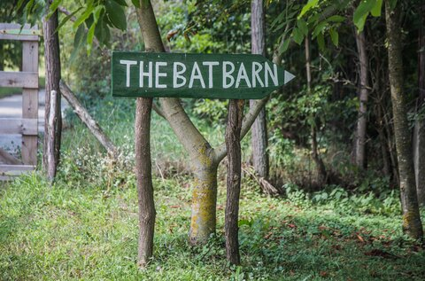 Hunyady Bat Barn