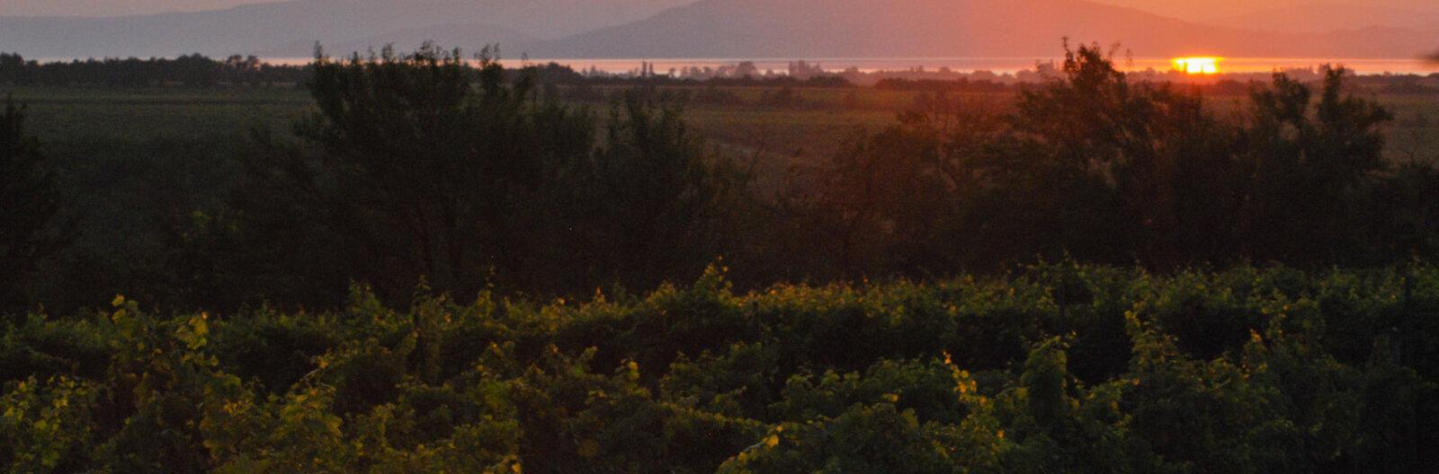 Nyolc hely, ahonnan látni kell a Balatont