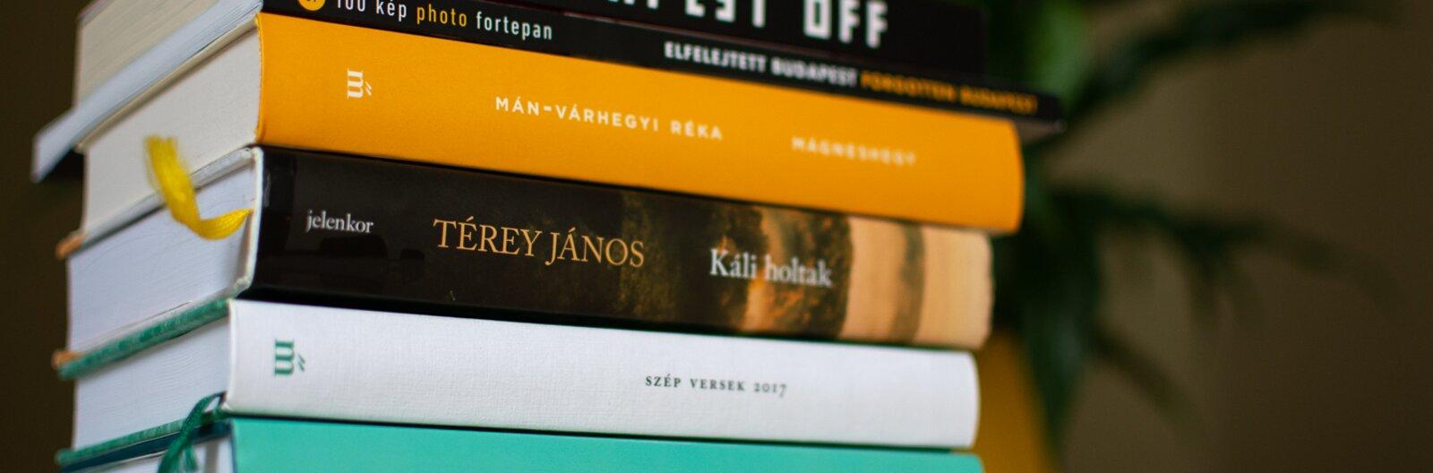 6+1 könyv a nyárra, a zombiktól a szövevényes családi drámákon át az elfelejtett budapesti fotókig