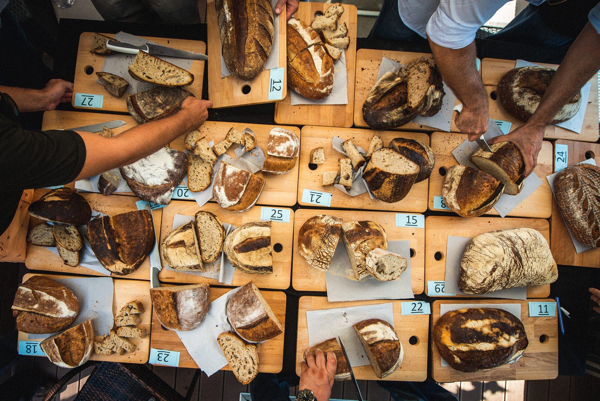 """""""Hiszünk abban, hogy a jó kenyér mindenkié"""" – interjú a Kenyérlelke Fesztivál szervezőivel"""