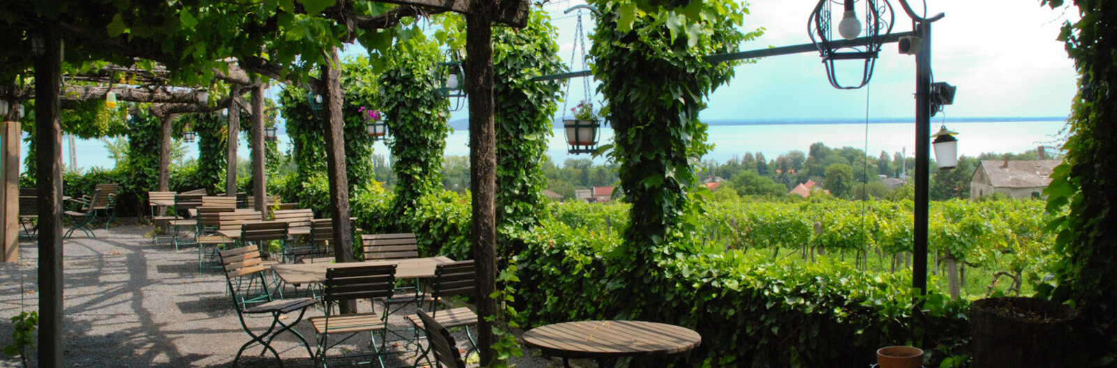 Drink wine in an arboretum! - 10 must-see wine terraces at Lake Balaton