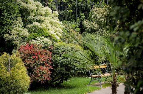 ELTE Botanical Gardens