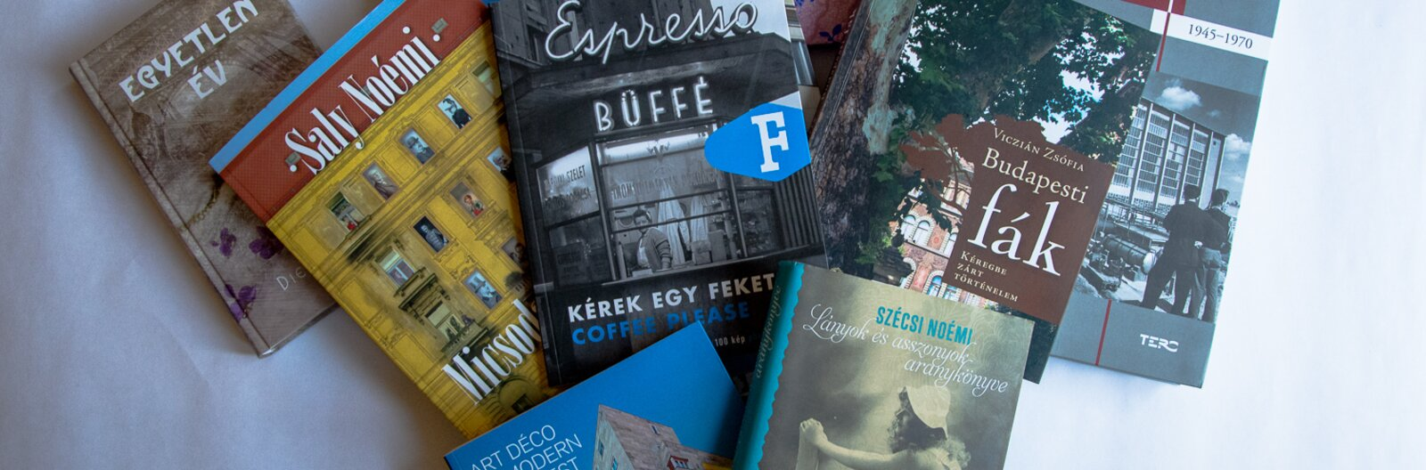 8+1 tökéletes könyves ajándékötlet karácsonyra, Budapest és az építészet rajongóinak