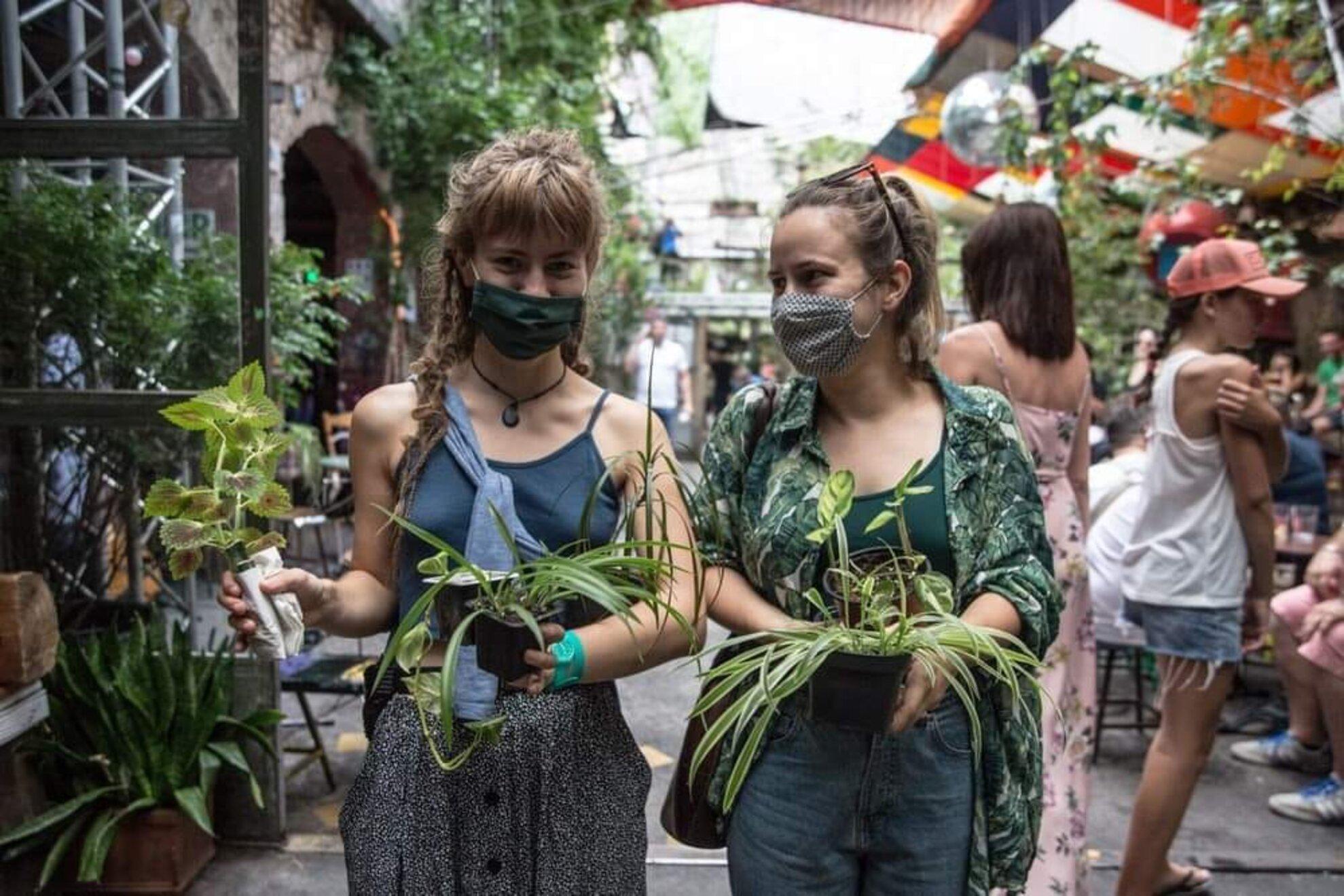 Növénycsere és -örökbefogadás