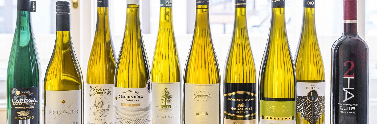 Tíz igazán különleges balatoni bor