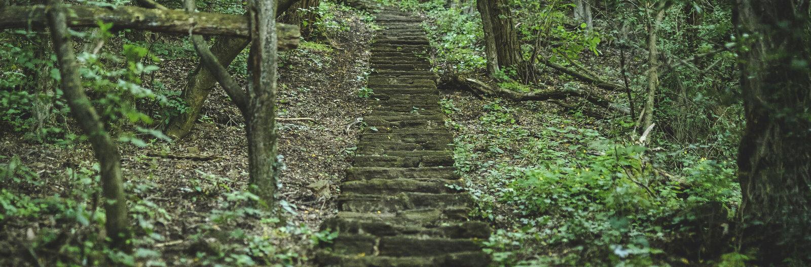 5 gyönyörű lépcsősor a Balatonnál, amit bármikor megmásznánk