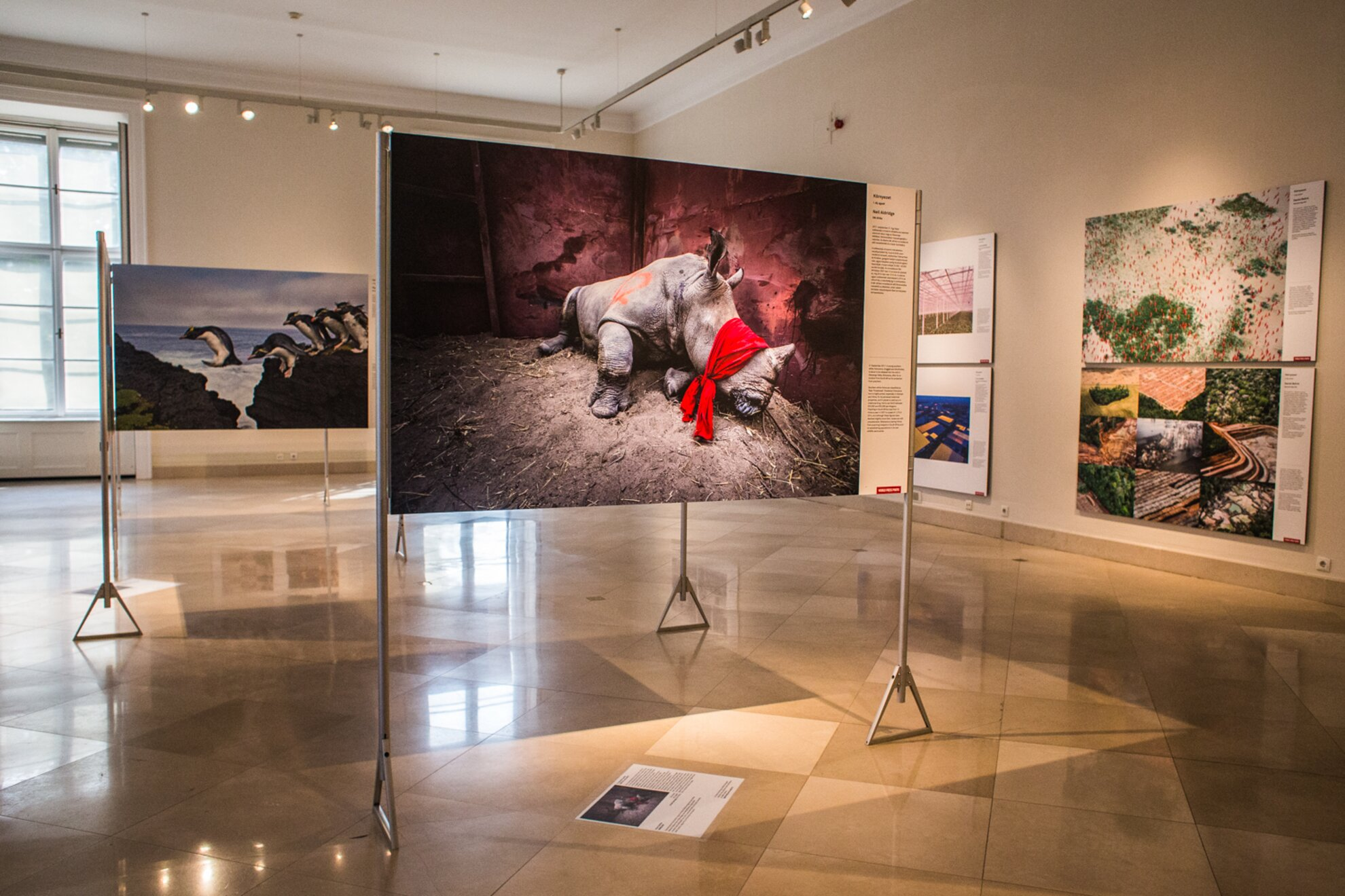 World Press Photo kiállítás 2020