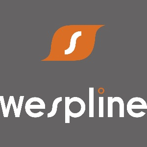 WeSpline: A New Conference Experience