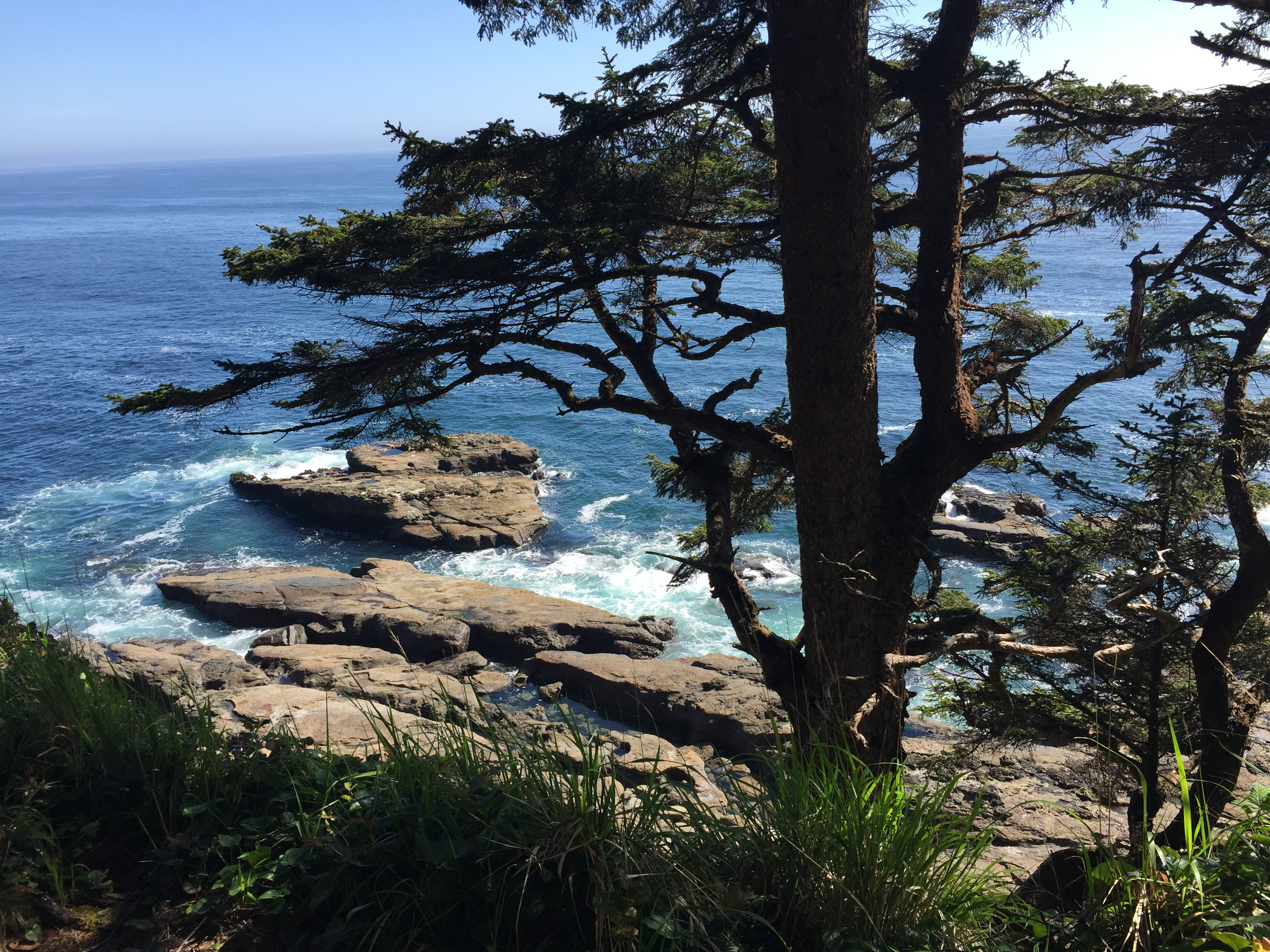 west coast trail tips and view of the ocean
