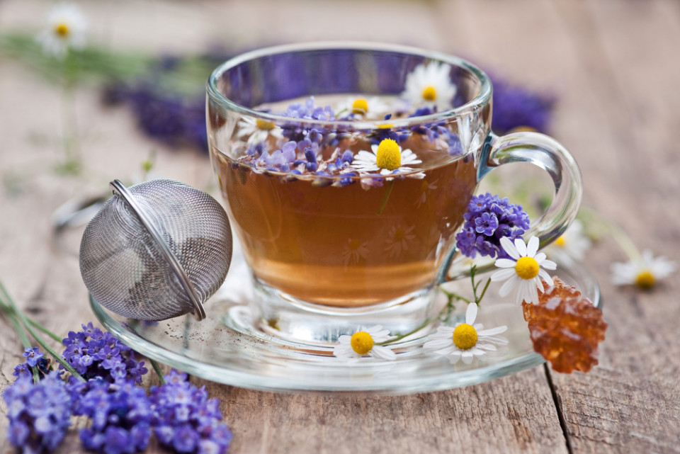 Lavender: The Plant to Soothe Your Mind and Improve Your Sleep