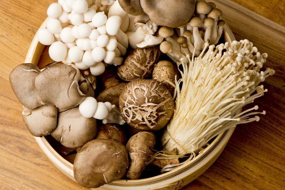 Mushrooms That Pack An Immunity Punch