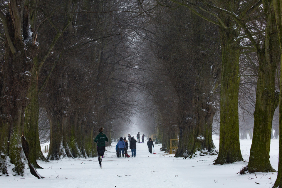 Best Ways to Stay Active Outside During the Winter