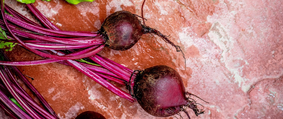 Beetroots – Amazing Benefits With a Few Risks