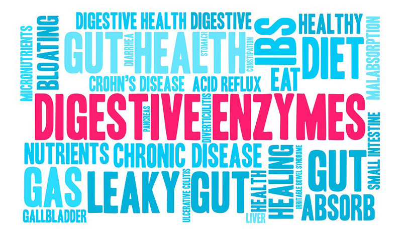 Digestive Enzymes: The Best Supplement You Didn't Know You Needed!