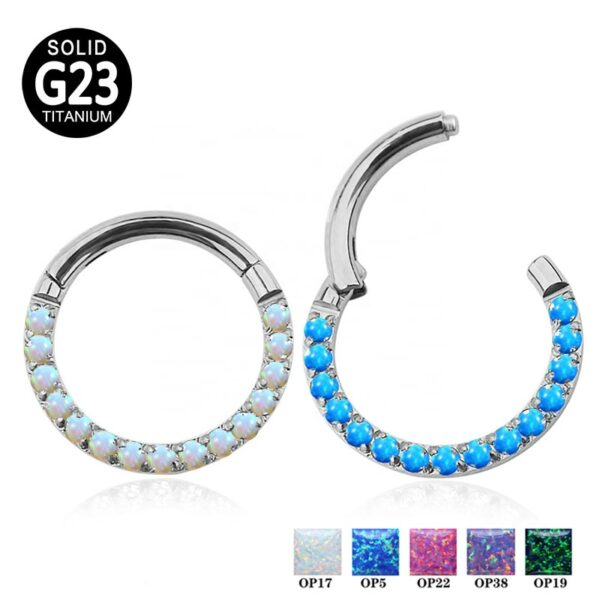 G23 Titanium Hinged Segment Hoop Opal Stone Nose Ring Clicker Labret Ear Tragus Cartilage Daith Helix Earring Piercing Jewelry